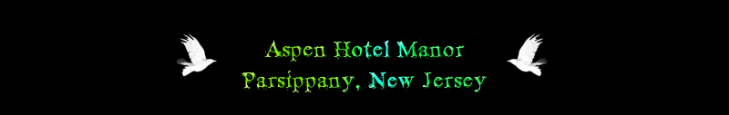 Aspen Hotel Manor Header